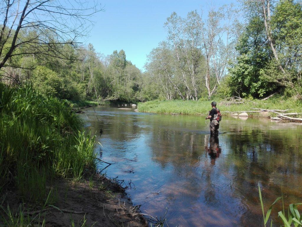 Žvejys upėje