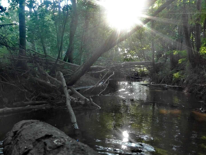 Upė ir saulė